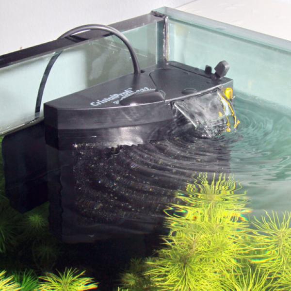innenfilter von jbl cristalprofi m greenline garnelen. Black Bedroom Furniture Sets. Home Design Ideas